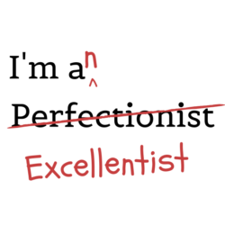 The Perfectionist Student